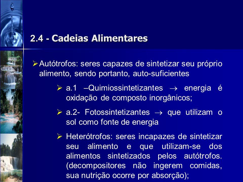 2.4 - Cadeias AlimentaresAutótrofos: seres capazes de sintetizar seu próprio alimento, sendo portanto, auto-suficientes.