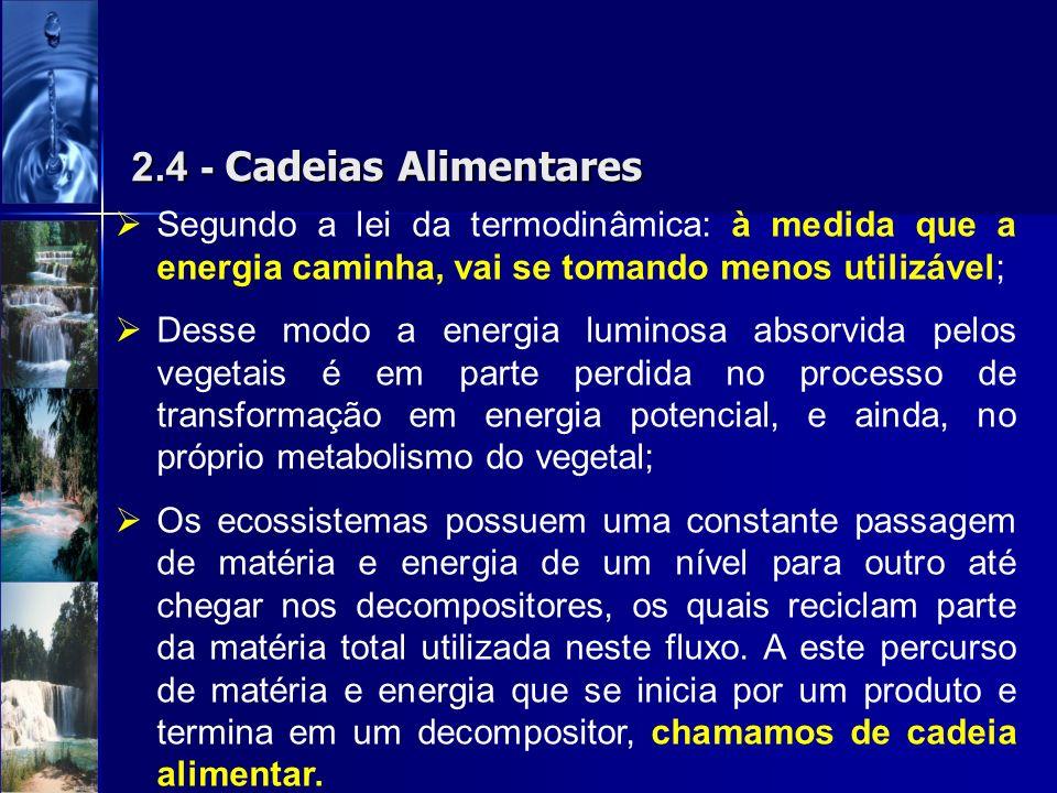 2.4 - Cadeias AlimentaresSegundo a lei da termodinâmica: à medida que a energia caminha, vai se tomando menos utilizável;