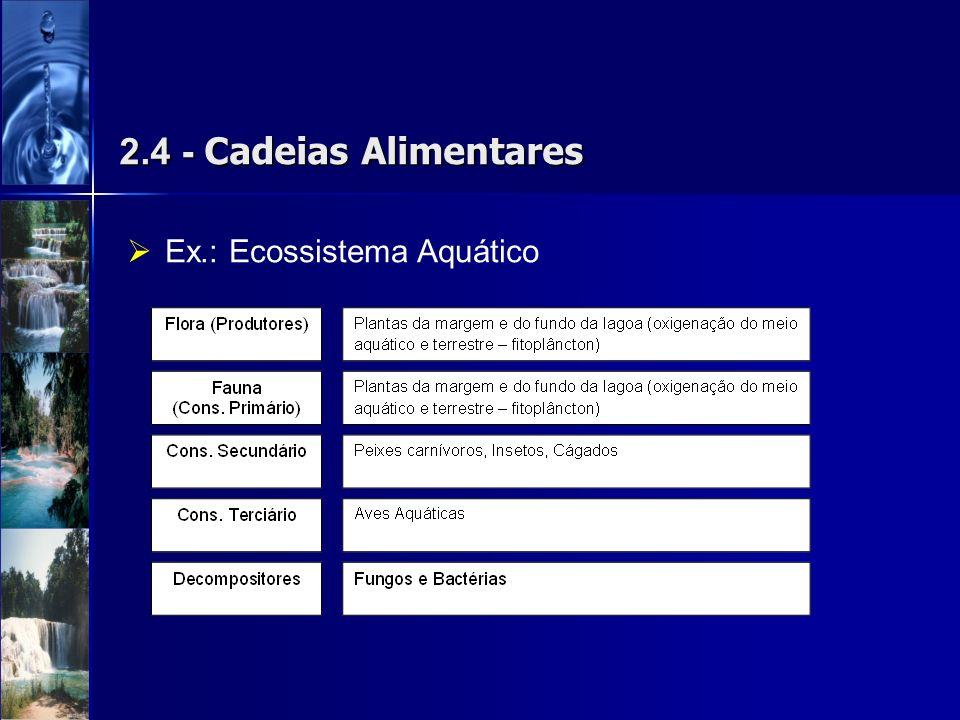 2.4 - Cadeias Alimentares Ex.: Ecossistema Aquático