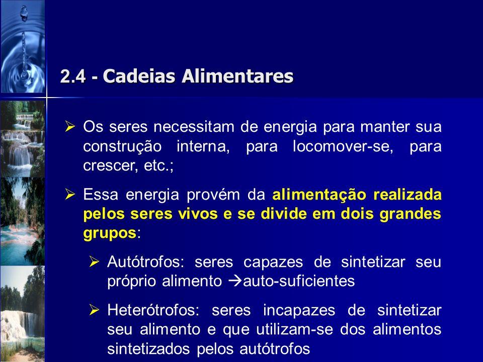 2.4 - Cadeias Alimentares Os seres necessitam de energia para manter sua construção interna, para locomover-se, para crescer, etc.;