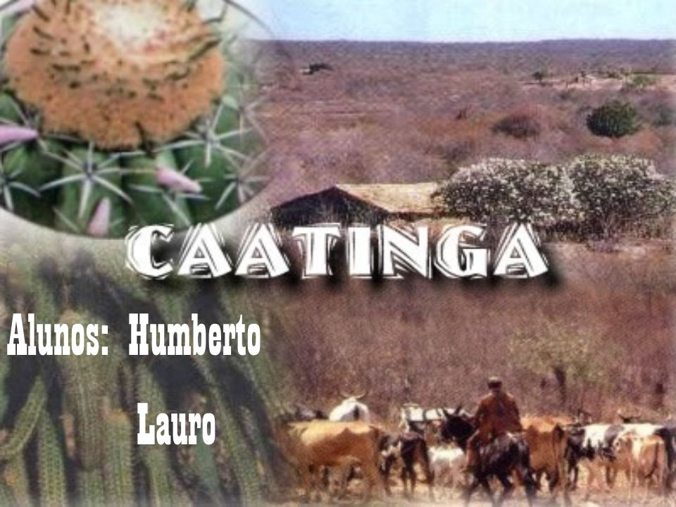 Alunos: Humberto Lauro