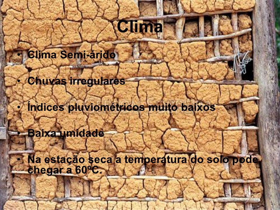 Clima Clima Semi-árido Chuvas irregulares