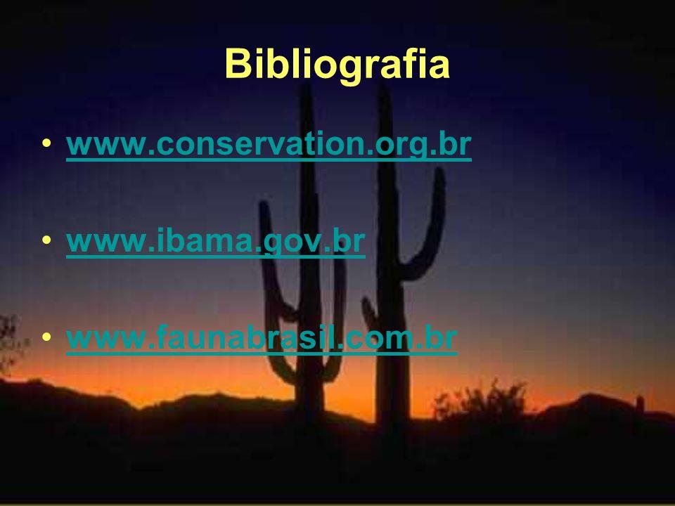 Bibliografia www.conservation.org.br www.ibama.gov.br
