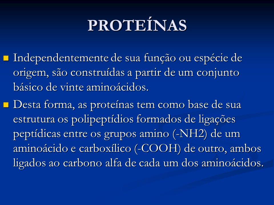 PROTEÍNASIndependentemente de sua função ou espécie de origem, são construídas a partir de um conjunto básico de vinte aminoácidos.