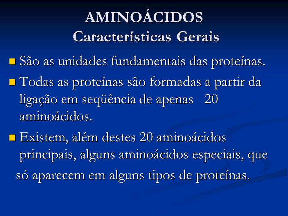 AMINOÁCIDOS Características Gerais