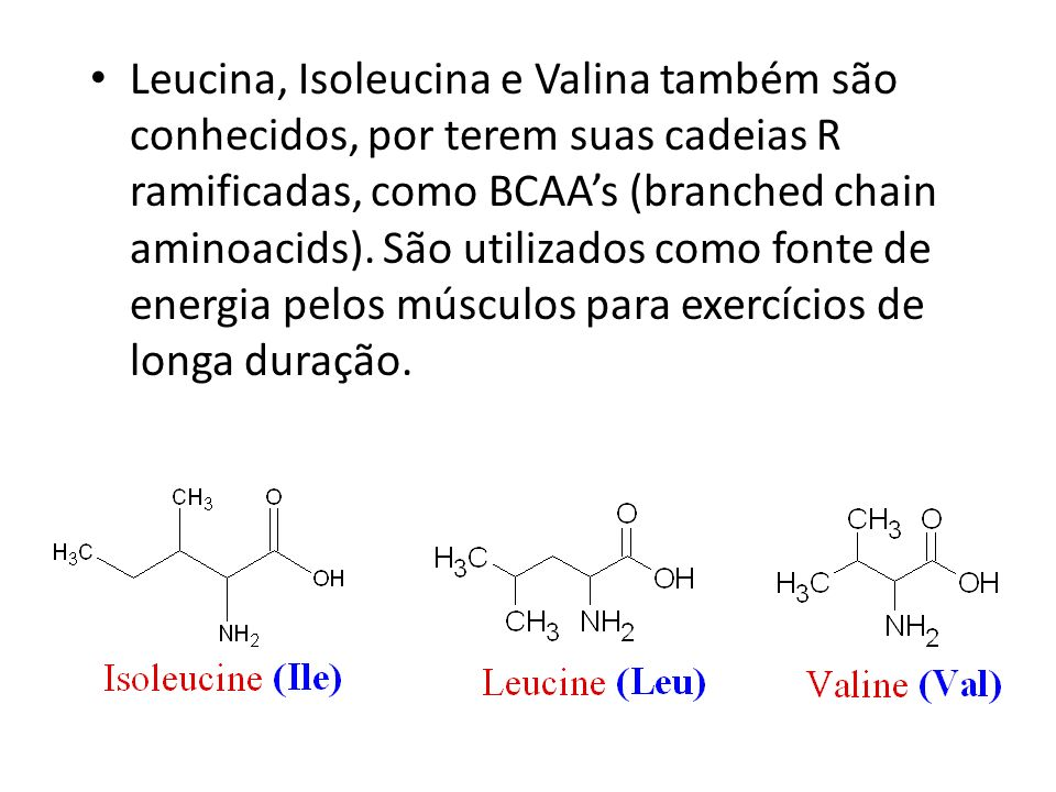 Leucina, Isoleucina e Valina também são conhecidos, por terem suas cadeias R ramificadas, como BCAA's (branched chain aminoacids).