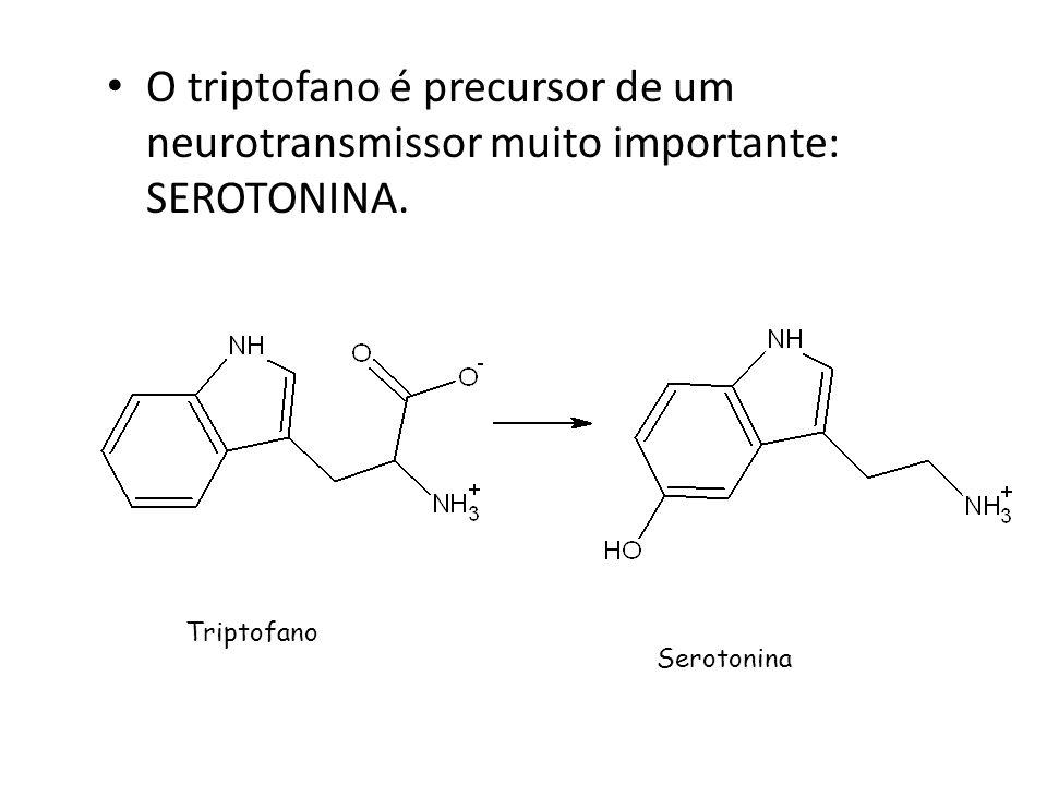 O triptofano é precursor de um neurotransmissor muito importante: SEROTONINA.