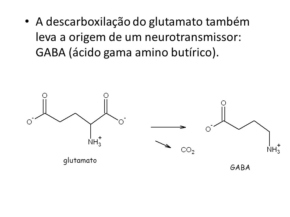 A descarboxilação do glutamato também leva a origem de um neurotransmissor: GABA (ácido gama amino butírico).