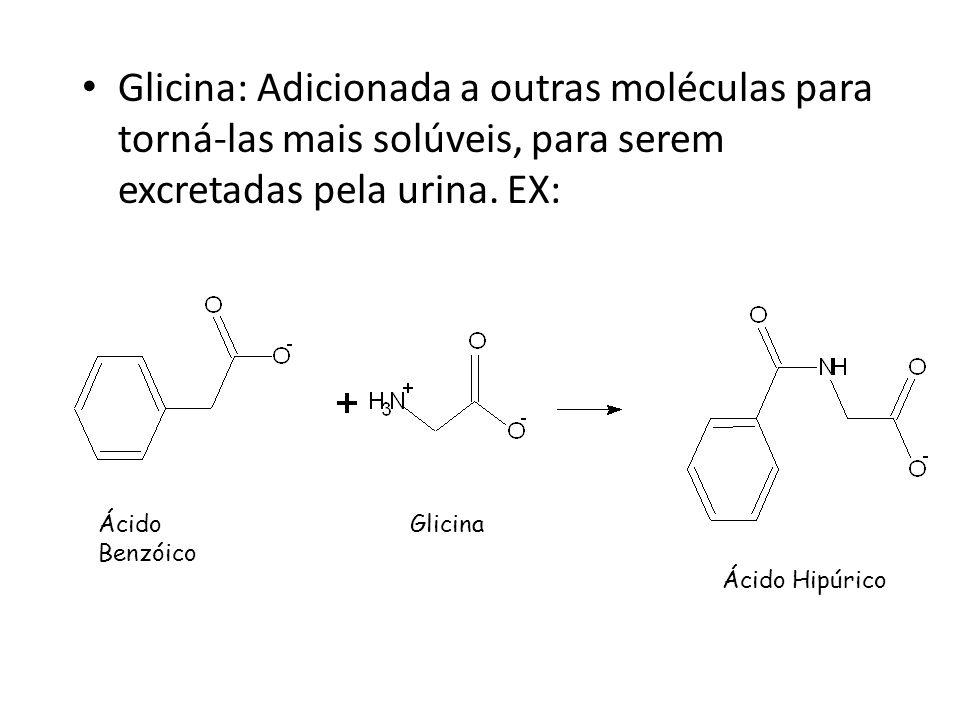 Glicina: Adicionada a outras moléculas para torná-las mais solúveis, para serem excretadas pela urina. EX: