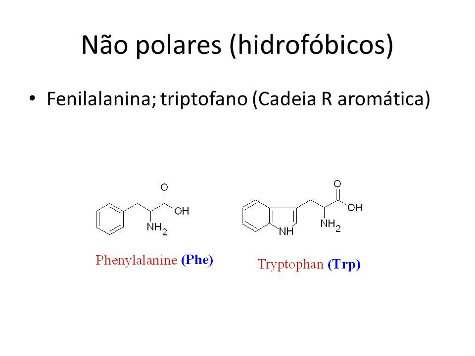 Não polares (hidrofóbicos)