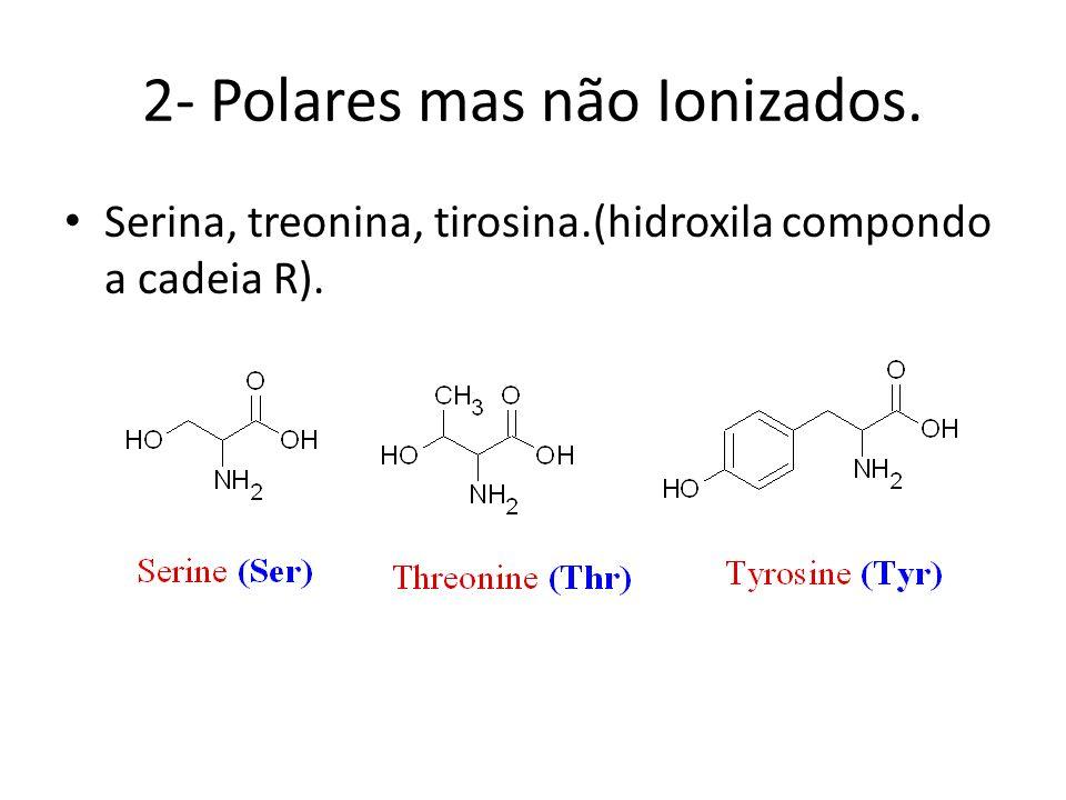 2- Polares mas não Ionizados.