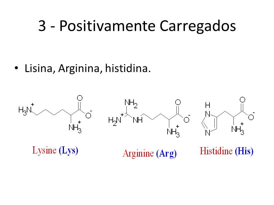3 - Positivamente Carregados