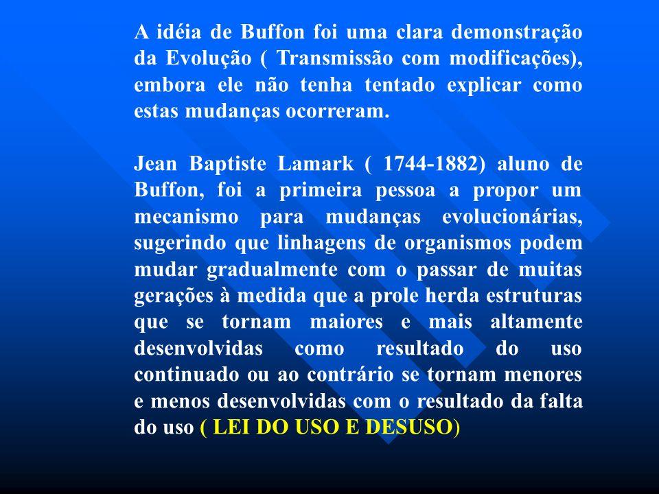 A idéia de Buffon foi uma clara demonstração da Evolução ( Transmissão com modificações), embora ele não tenha tentado explicar como estas mudanças ocorreram.
