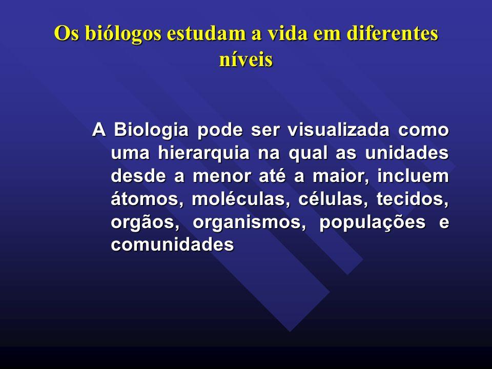 Os biólogos estudam a vida em diferentes níveis