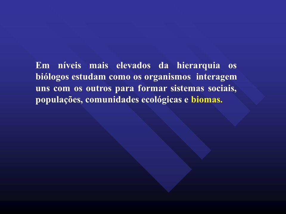 Em níveis mais elevados da hierarquia os biólogos estudam como os organismos interagem uns com os outros para formar sistemas sociais, populações, comunidades ecológicas e biomas.
