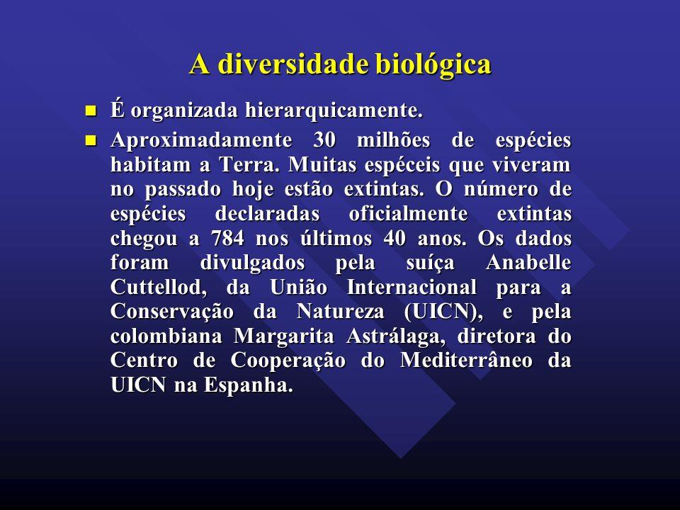 A diversidade biológica