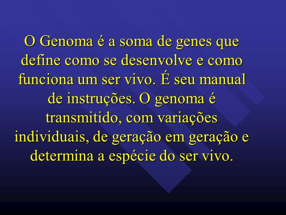 O Genoma é a soma de genes que define como se desenvolve e como funciona um ser vivo.