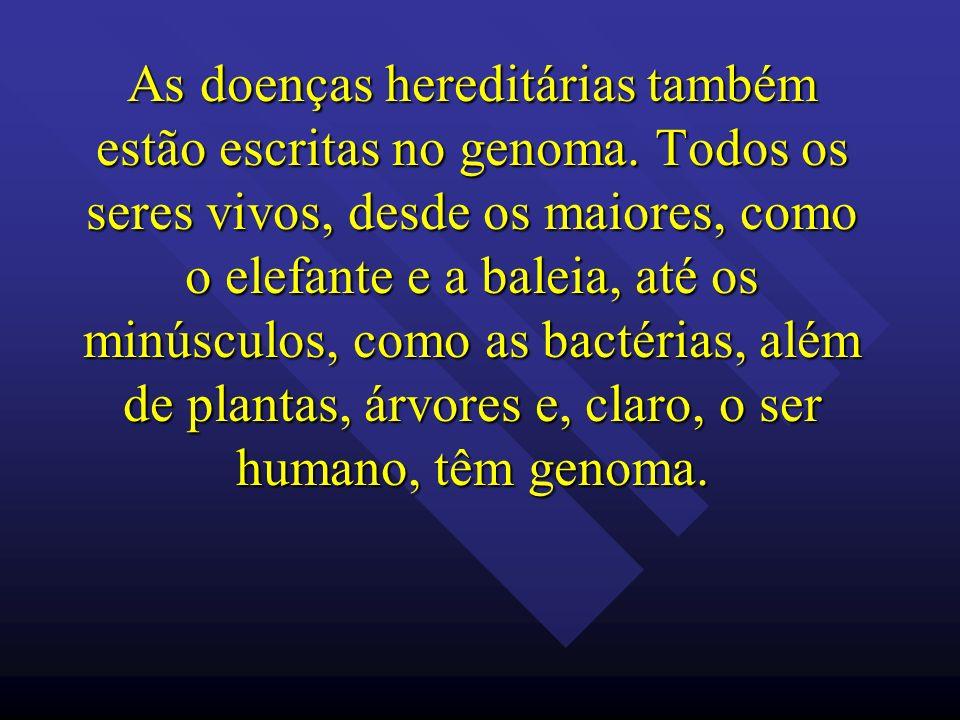 As doenças hereditárias também estão escritas no genoma
