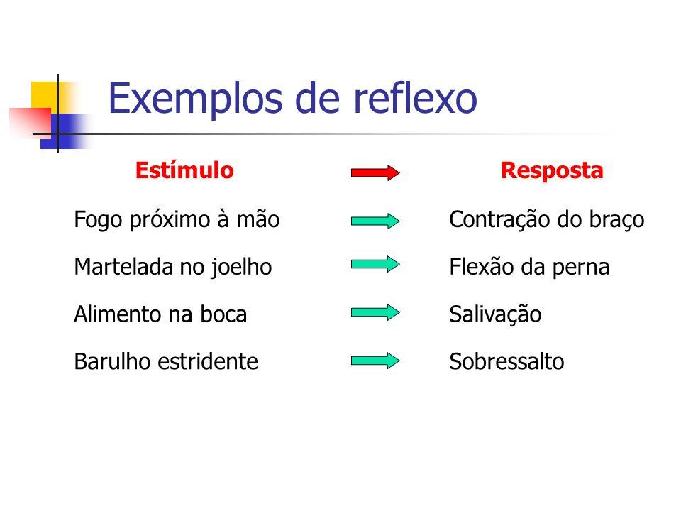 Exemplos de reflexo Estímulo Resposta Fogo próximo à mão