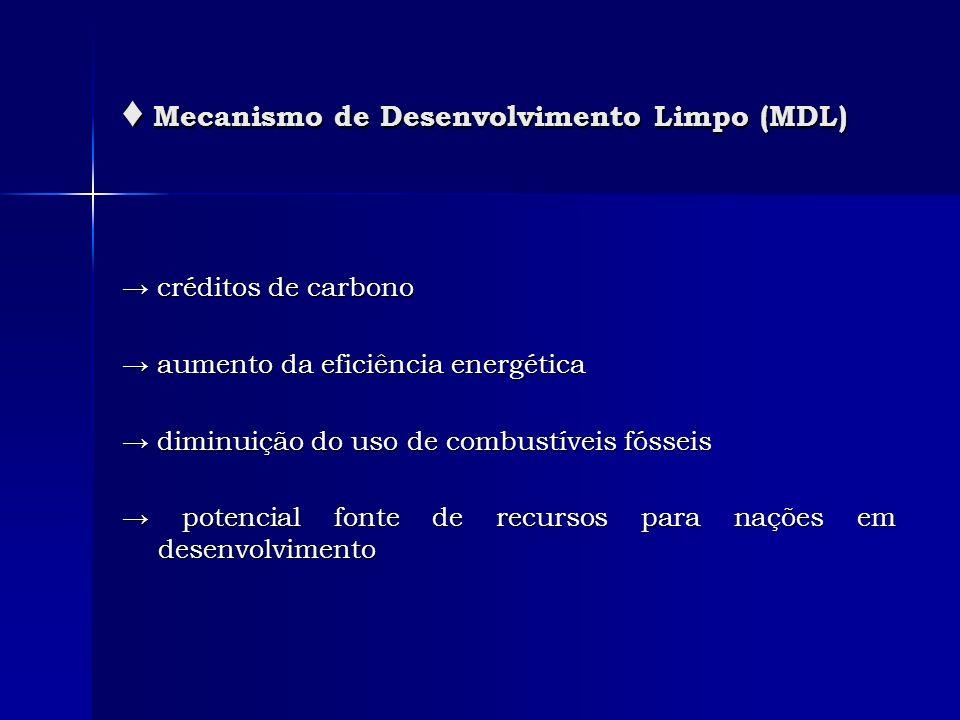 ♦ Mecanismo de Desenvolvimento Limpo (MDL)