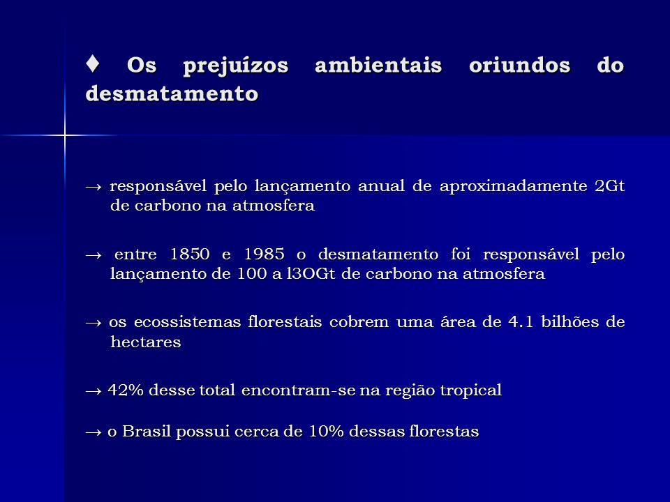 ♦ Os prejuízos ambientais oriundos do desmatamento