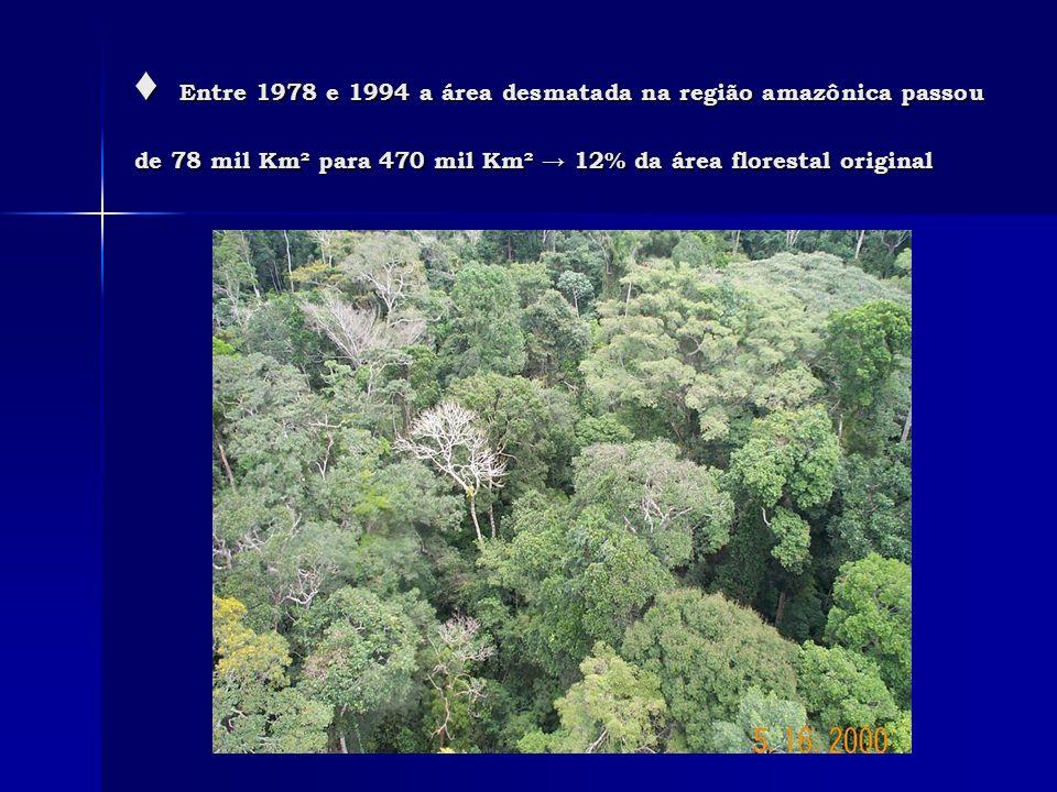 ♦ Entre 1978 e 1994 a área desmatada na região amazônica passou de 78 mil Km² para 470 mil Km² → 12% da área florestal original