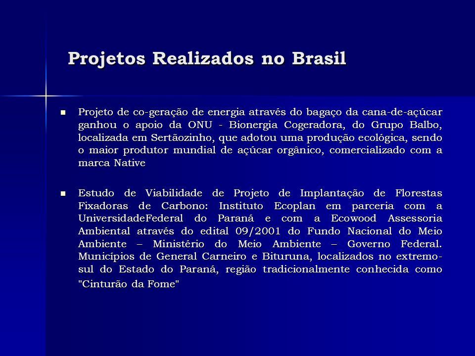 Projetos Realizados no Brasil