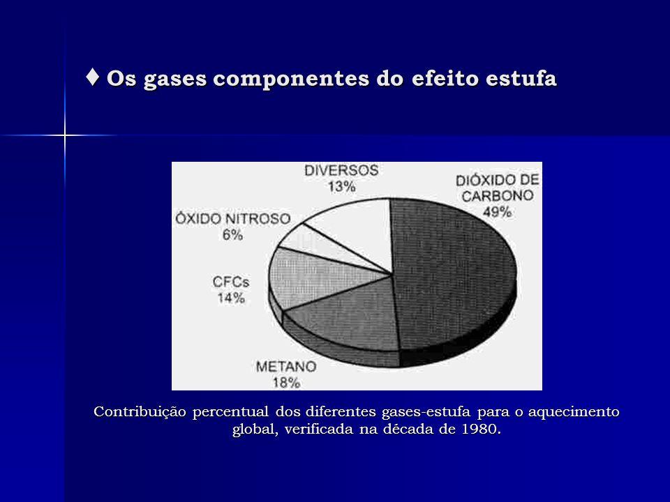 ♦ Os gases componentes do efeito estufa