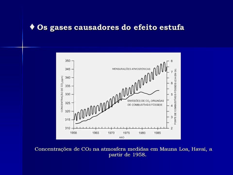 ♦ Os gases causadores do efeito estufa