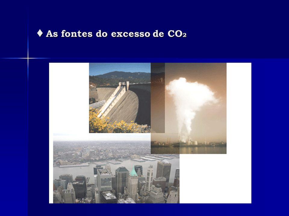 ♦ As fontes do excesso de CO2