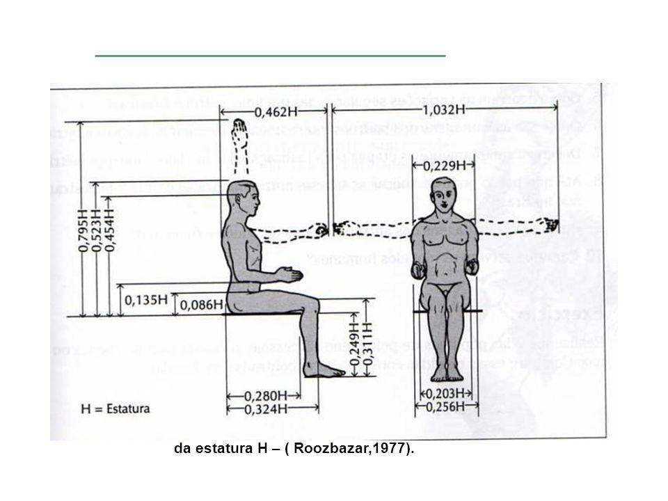 Estimativas de comprimento de partes do corpo, em função da estatura H – ( Roozbazar,1977).