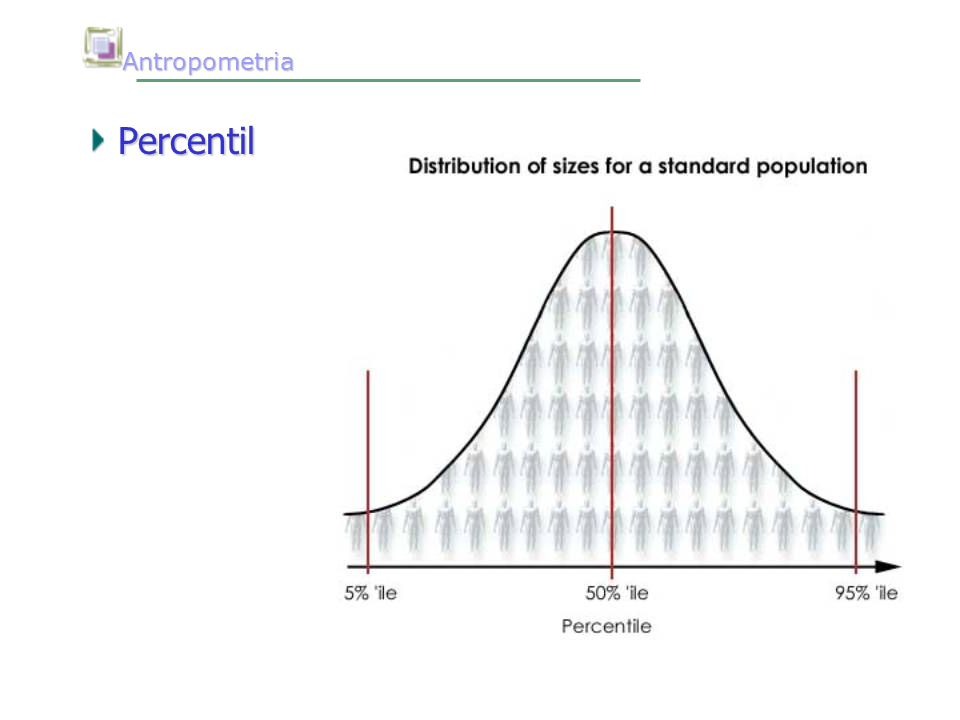 Antropometria Percentil
