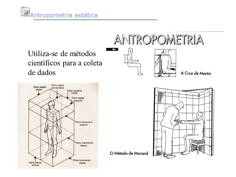 Fundamentos da ergonomia ppt video online carregar for Antropometria estatica