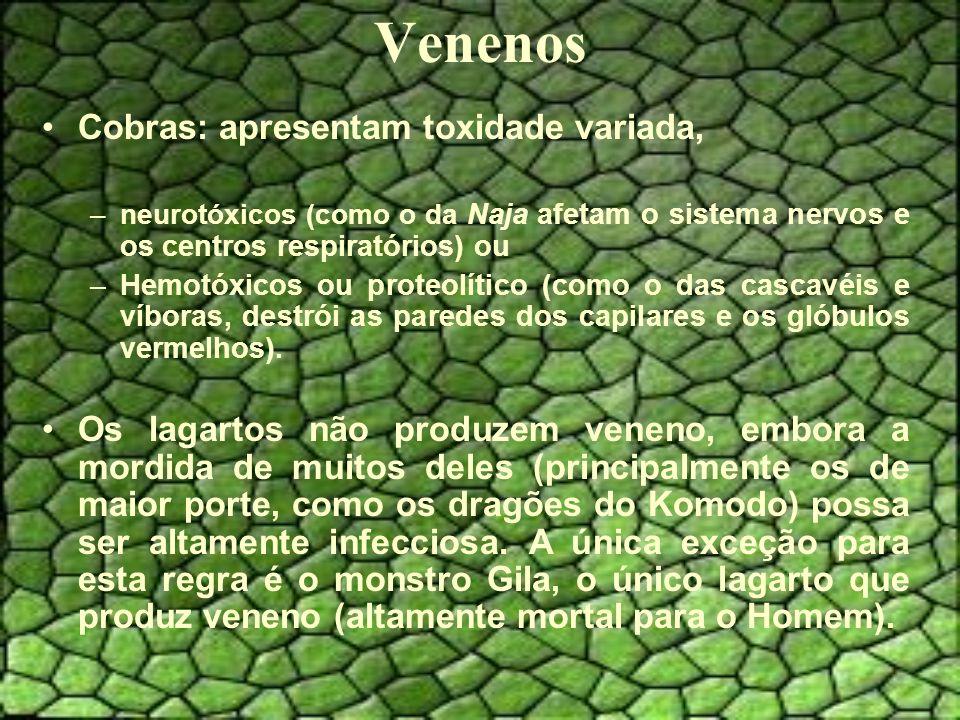 Venenos Cobras: apresentam toxidade variada,
