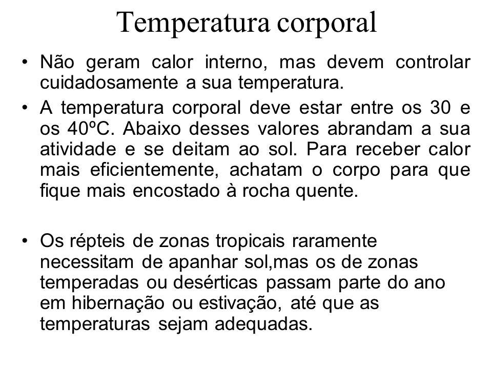 Temperatura corporal Não geram calor interno, mas devem controlar cuidadosamente a sua temperatura.