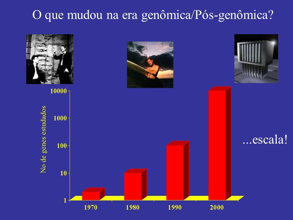 O que mudou na era genômica/Pós-genômica