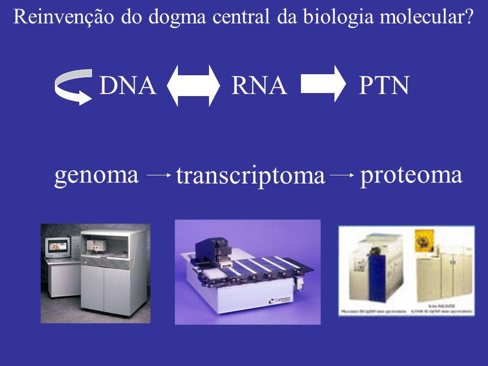 DNA RNA PTN genoma transcriptoma proteoma