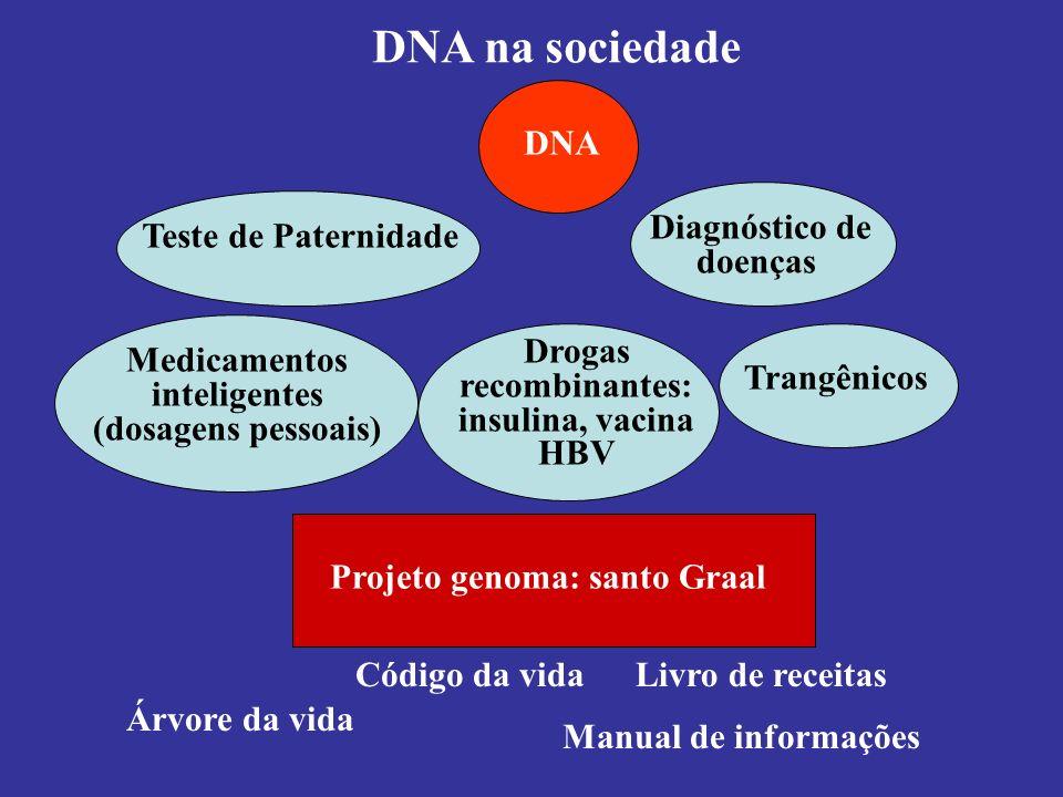 Projeto genoma: santo Graal