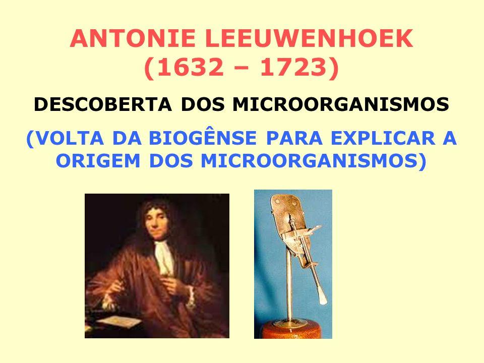 ANTONIE LEEUWENHOEK (1632 – 1723)