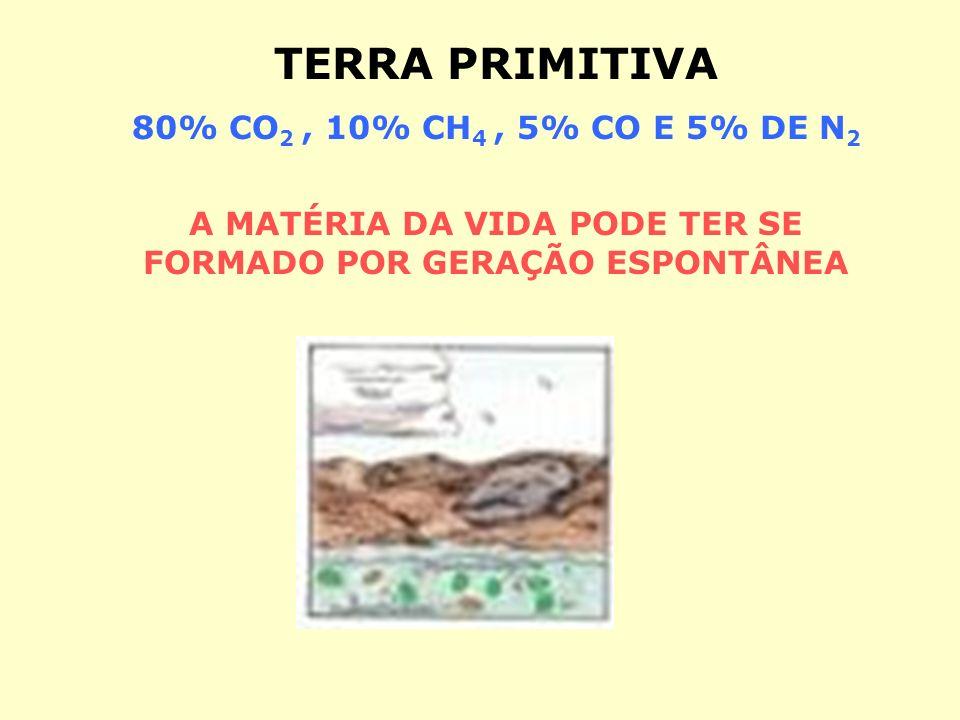 A MATÉRIA DA VIDA PODE TER SE FORMADO POR GERAÇÃO ESPONTÂNEA