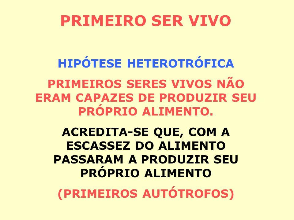 HIPÓTESE HETEROTRÓFICA (PRIMEIROS AUTÓTROFOS)