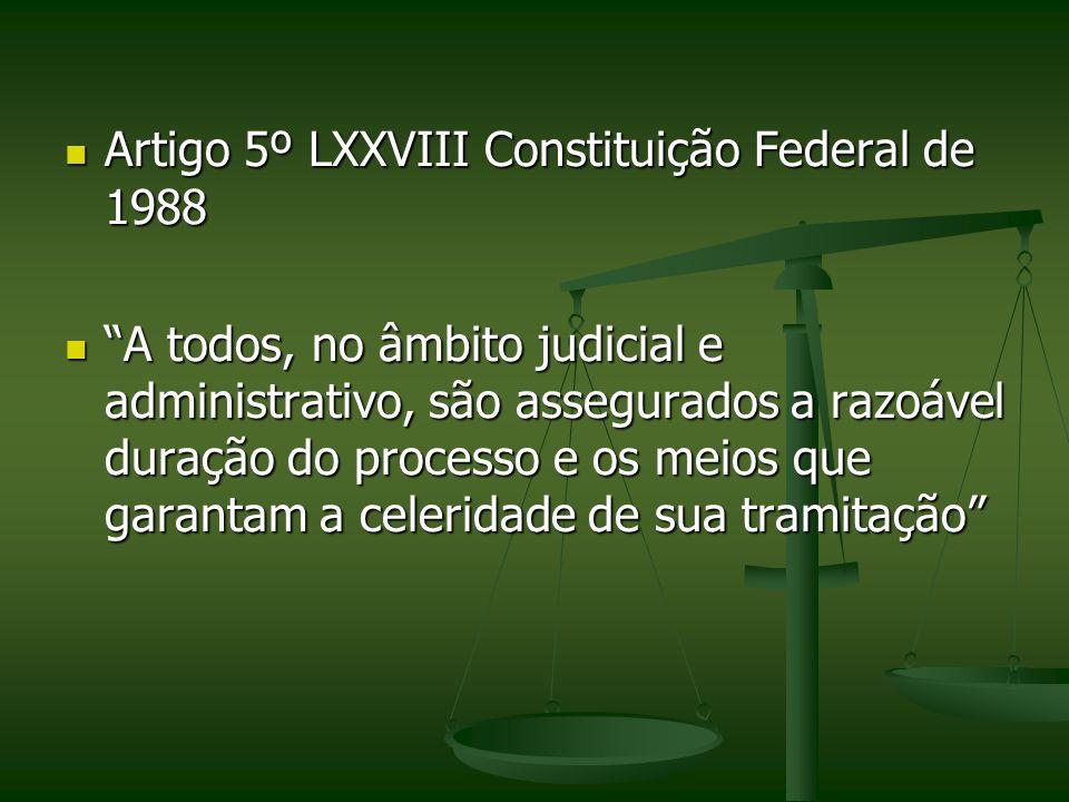 Artigo 5º LXXVIII Constituição Federal de 1988