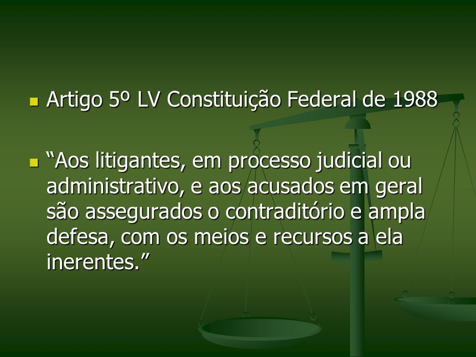 Artigo 5º LV Constituição Federal de 1988