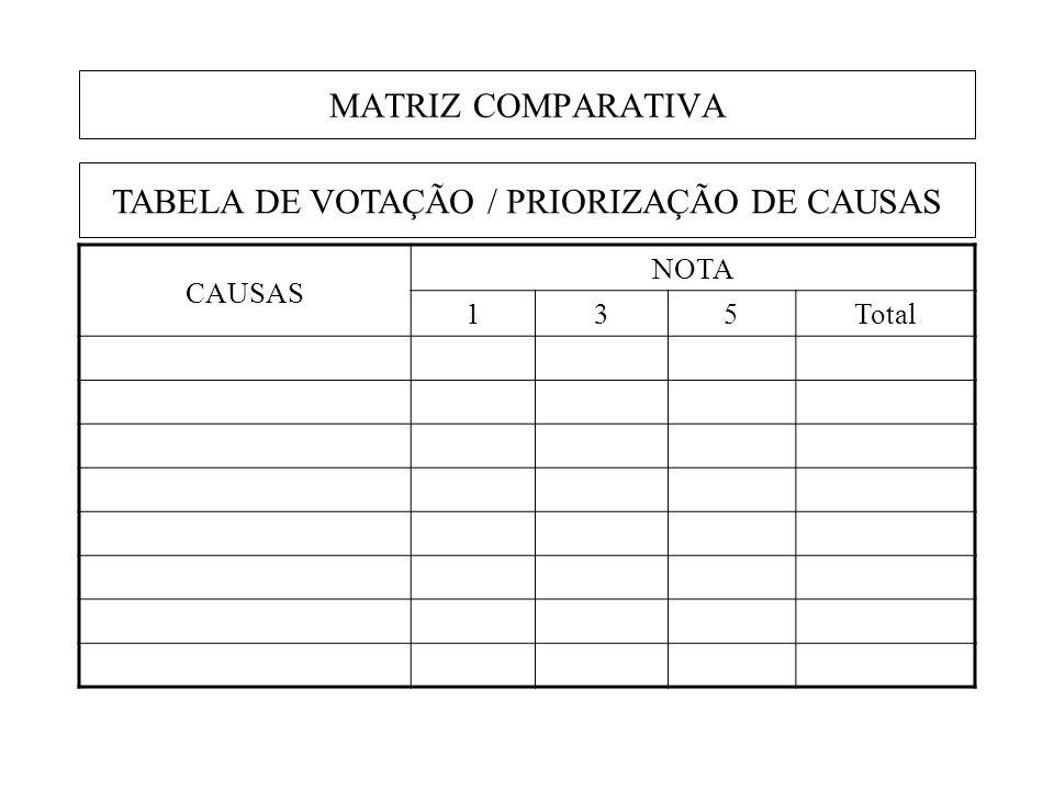 TABELA DE VOTAÇÃO / PRIORIZAÇÃO DE CAUSAS