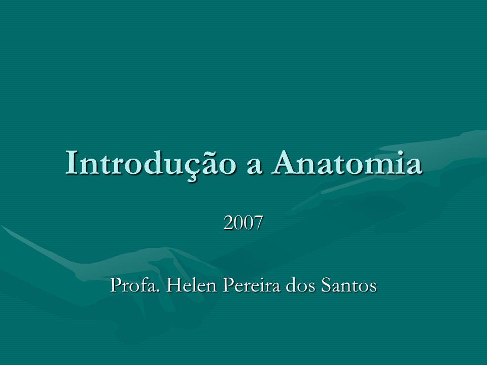 2007 Profa. Helen Pereira dos Santos