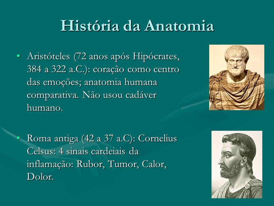 História da Anatomia