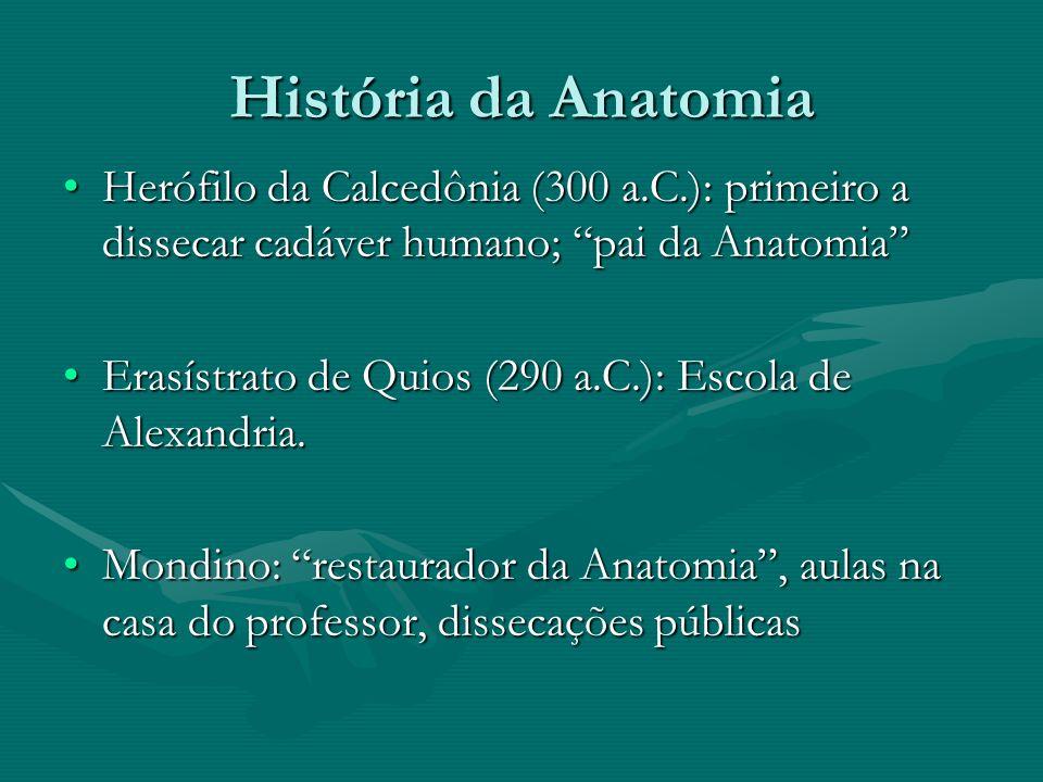 História da Anatomia Herófilo da Calcedônia (300 a.C.): primeiro a dissecar cadáver humano; pai da Anatomia