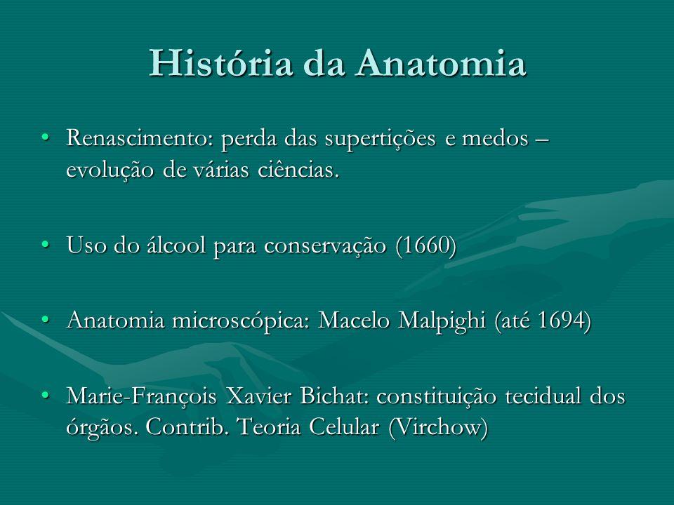 História da Anatomia Renascimento: perda das supertições e medos – evolução de várias ciências. Uso do álcool para conservação (1660)