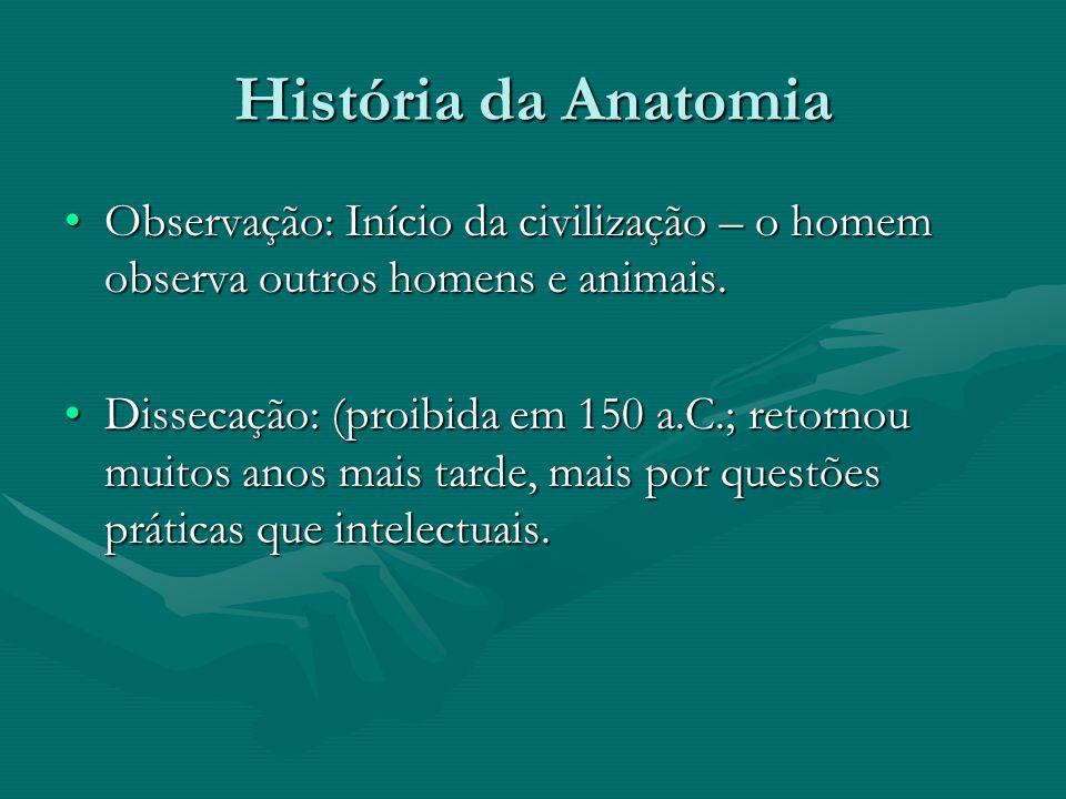 História da Anatomia Observação: Início da civilização – o homem observa outros homens e animais.