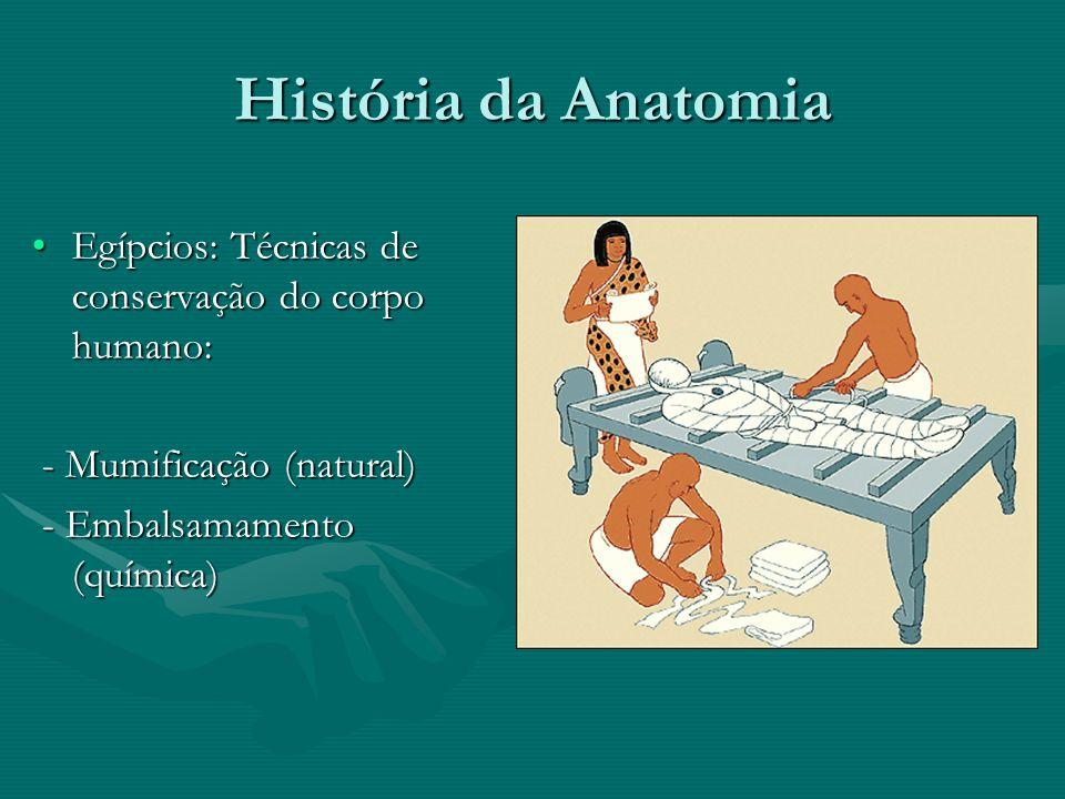 História da Anatomia Egípcios: Técnicas de conservação do corpo humano: - Mumificação (natural) - Embalsamamento (química)